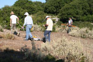 Έρευνες με ραντάρ διείσδυσης εδάφους (GPR) και με ηλεκτρομαγνητισμό (EM) στο Καστέλλι (Ιούλιος 2017)