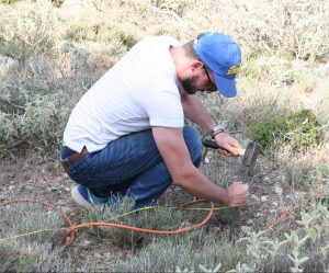 Electrodes are hammered into the ground every 2m along the resistivity line